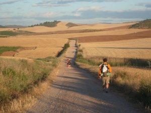 A Fall Path 1