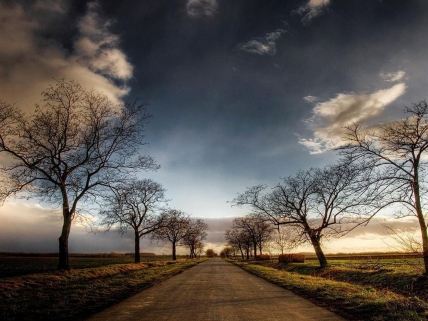 Long Road 2