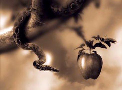 Snake & Apple 1