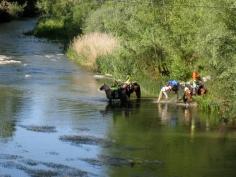 Rio Cea and Horse Peregrinos