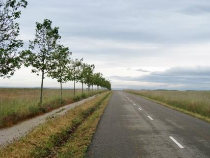 The Way