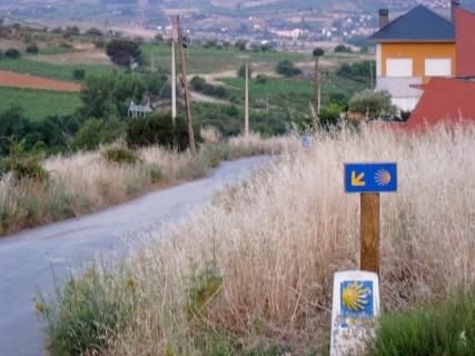 Leaving Molinaseca