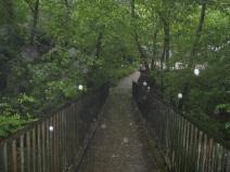 Rainsoaked Bridge