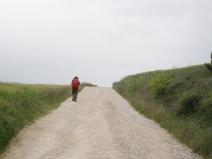 A Lone Pilgrim