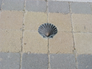 The Camino Shell