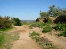 A Rugged Land