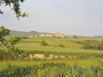 A Distant Village
