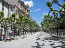 Calle Along Park