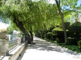 Park Walk Along River