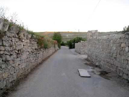 Leaving Hontanna