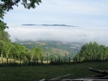 Seeing Under the Mist