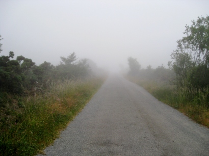 The Way Into the Mist