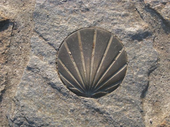 Shell Marker